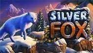 Автомат Silver Fox