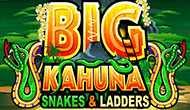 Игровые автоматы Big Kahuna