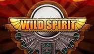 Игровые автоматы Wild Spirit