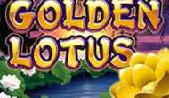 Играйте в Золотой Лотус на сайте Вулкан Платинум